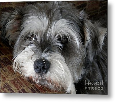 Spirit Missing Lisa -sparke Metal Print by Angelia Hodges Clay