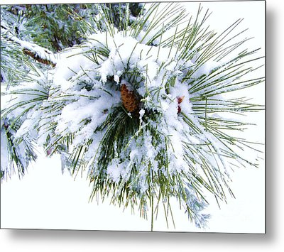 Metal Print featuring the photograph Spirit Of Pine by Margie Amberge