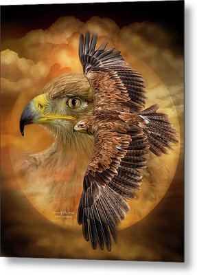 Spirit Of The Wind Metal Print by Carol Cavalaris