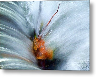 Splash O Color Metal Print