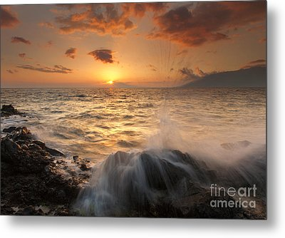 Splash Of Paradise Metal Print by Mike  Dawson
