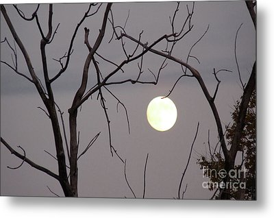 Spooky Moon Metal Print by Deborah Smolinske