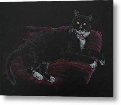 Spooky The Cat Metal Print by Michele Myers