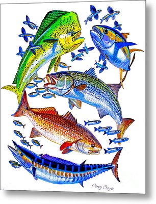 Sportfish Collage Metal Print by Carey Chen