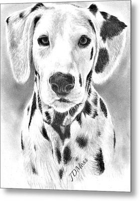 Spots Everywhere Metal Print by Janet Moss