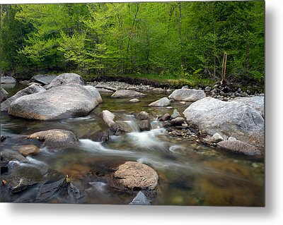 Spring Along The North Fork Metal Print