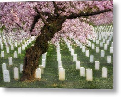 Spring Arives At Arlington National Cemetery Metal Print by Susan Candelario