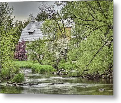Spring Arrives At The Rose Farm Metal Print by Thomas Young