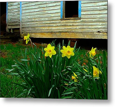 Spring At The Old Home Place Metal Print by Julie Dant