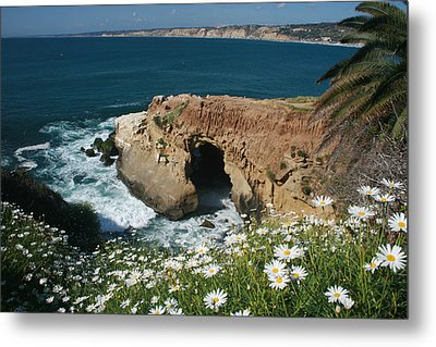 Spring Bloom At The Cove Metal Print