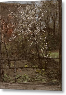 Spring Blossoms Metal Print by Henry Muhrmann
