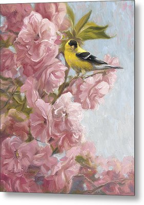 Spring Blossoms Metal Print by Lucie Bilodeau