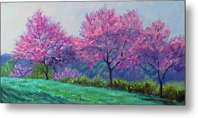 Spring Blossoms On Mill Mountain Metal Print