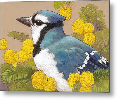 Spring Blue Jay 4 Metal Print by Tracie Thompson