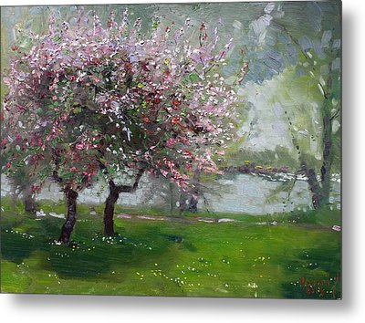Spring By The River Metal Print by Ylli Haruni