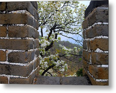 Spring Flowers At The Great Wall Metal Print by Larry Moloney