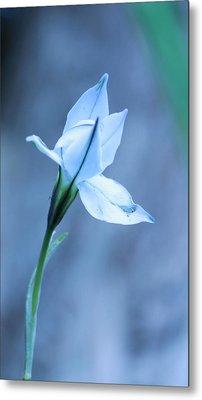 Spring Flowers Metal Print by Theresa Selley