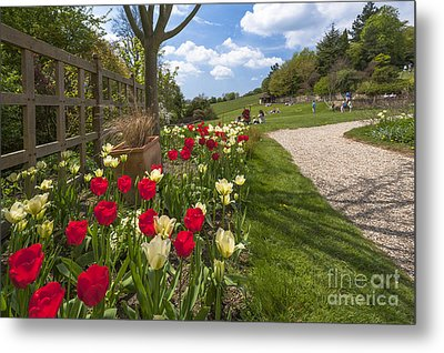 Spring Garden Metal Print by Donald Davis