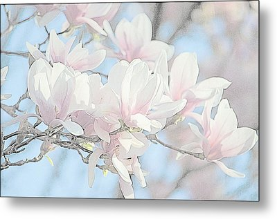 Metal Print featuring the photograph Spring Has Arrived 3 by Susan  McMenamin