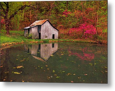 Spring Has Come To The Appalachia Metal Print by Bijan Pirnia