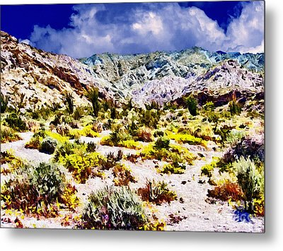 Spring In Anza Borrega  Metal Print by Bob and Nadine Johnston