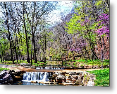 Spring In Dogwood Canyon Metal Print by Jean Hutchison