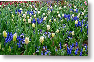 Spring In Giverny Metal Print by Kathy Ponce