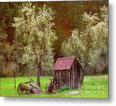 Spring In Old Ranch Metal Print by Irina Hays