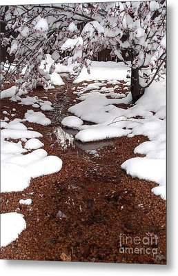 Metal Print featuring the photograph Spring Into Winter by Kerri Mortenson