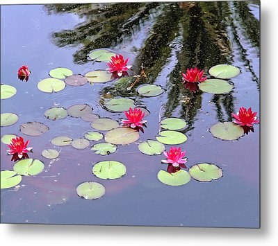 Spring Lilly Metal Print