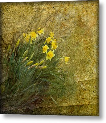 Spring Metal Print by Liz  Alderdice