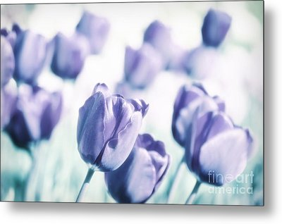 Spring Love II Metal Print by Angela Doelling AD DESIGN Photo and PhotoArt