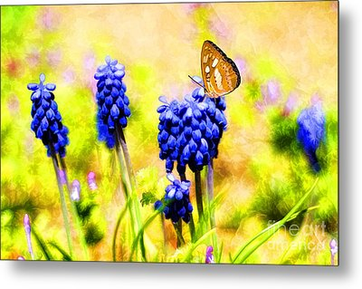 Spring Magic Metal Print by Darren Fisher