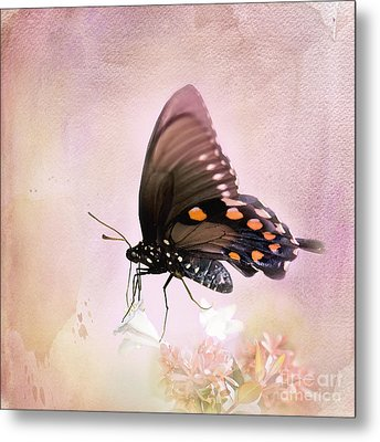 Spring Morning Metal Print by Betty LaRue