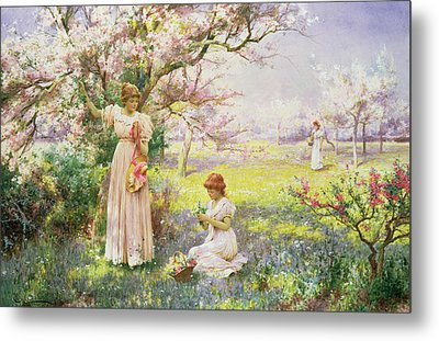 Spring   Picking Flowers Metal Print by Alfred Augustus I Glendenning