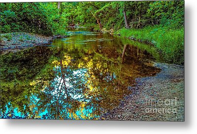 Spring Reflection  Metal Print by Peggy Franz