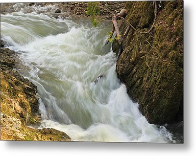 Spring Rush Metal Print by Julie Andel