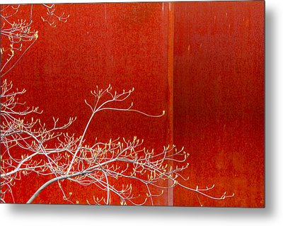 Metal Print featuring the photograph Spring Rust by Takeshi Okada