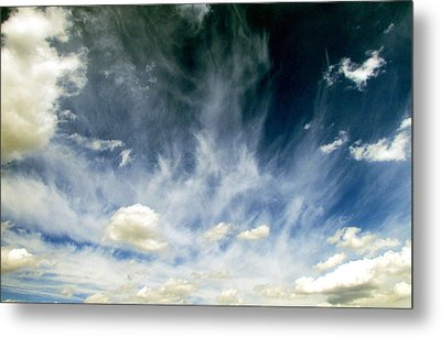 Spring Sky Metal Print by Andrea Dale
