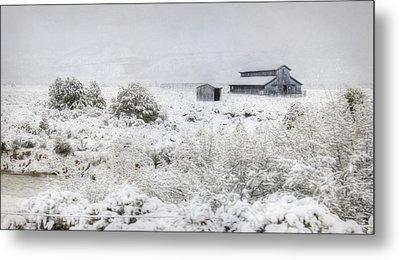 Spring Snow Storm Metal Print by Lori Deiter