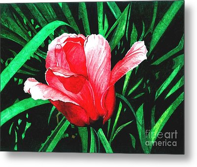 Metal Print featuring the painting Spring Solo by Barbara Jewell