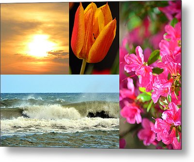 Spring Summer Collage Metal Print by Sandi OReilly