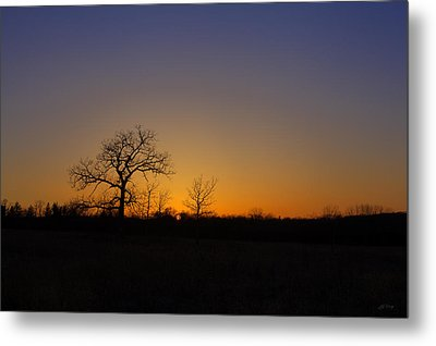 Spring Sunset Pops Through Trees Metal Print