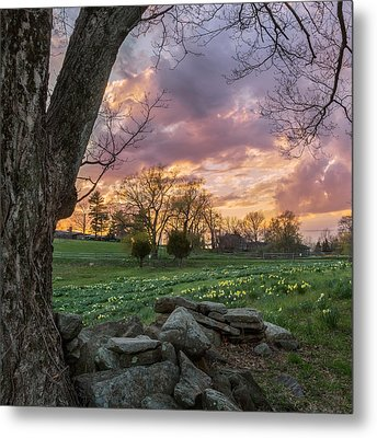 Spring Sunset Square Metal Print by Bill Wakeley