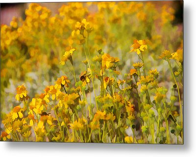 Spring Metal Print by Tammy Espino