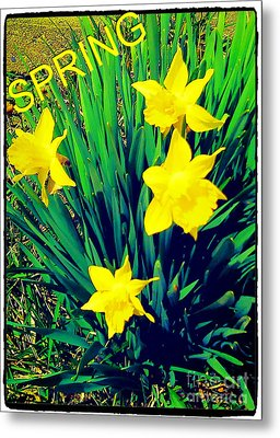 Spring Metal Print by Thommy McCorkle