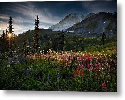 Spring Time At Mt. Rainier Washington Metal Print by Larry Marshall