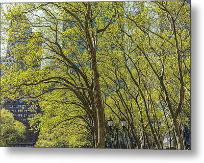 Spring Time In Bryant Park New York Metal Print by Angela A Stanton