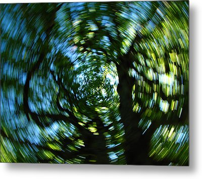 Spring Tree Carousel Metal Print by Juergen Roth