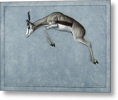 Springbok Metal Print by James W Johnson